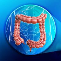 proctoscopia ticino